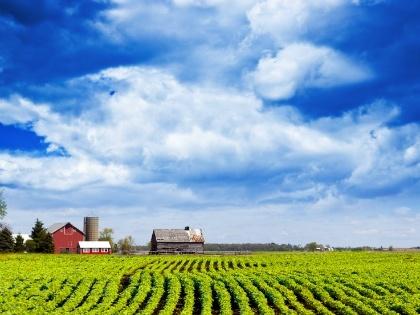 farm_420x315